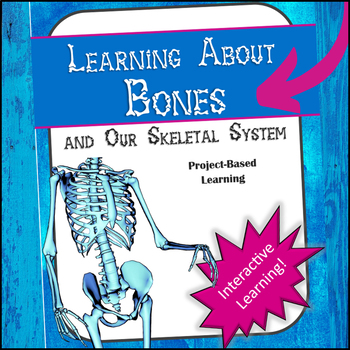 Learning about Bones and our Skeletal System - Interactive Learning