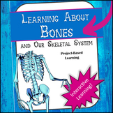 Learning about Bones and our Skeletal System - Interactive