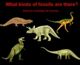 Learning about Paleontologists and Fossils