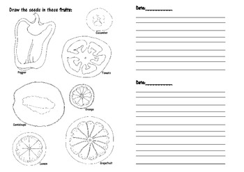 Learning about Plants Journal