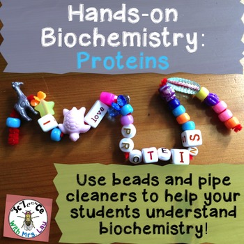 Hands-On Biochemistry: Protein Structure with Beads