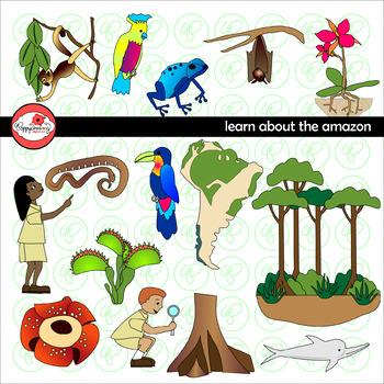 learning about the amazon rainforest clipart by poppydreamz tpt rh teacherspayteachers com amazon river clipart amazon animals clipart