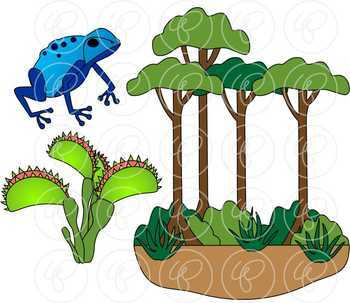 learning about the amazon rainforest clipart by poppydreamz tpt rh teacherspayteachers com rainforest clip art sihouettes rainforest clipart black and white