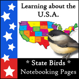 Learning about the U.S.A. - State Birds Notebooking Pages