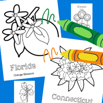 Learning about the U.S.A. - State Flowers COLORING BOOK