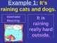 Learning to Understand Idioms