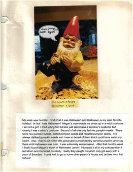 Learning to Write Point of View with the Classroom Gnome and Travel Journal