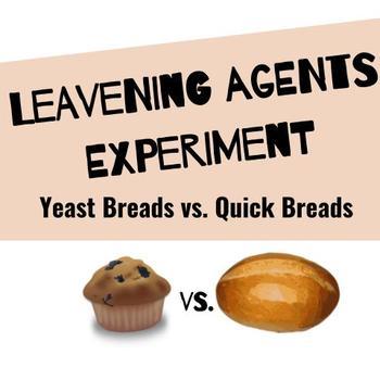 Leavening Agents Experiment