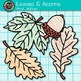 Autumn Leaves and Acorns Clip Art {Great for Classroom Dec