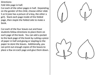Leaves: An Interactive Book