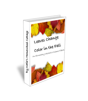 Leaves Change Color in the Fall