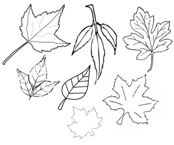 Leaves cut out printable by kids and coffee teachers pay for Leaf cut outs templates