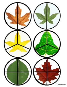 """""""Leaves"""" Fraction Circles for Autism"""