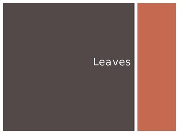Leaves PowerPoint