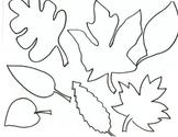 Leaves Printable