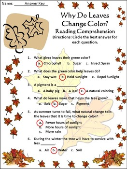 Leaves Activities: Why Do Leaves Change Color in The Fall Activity Bundle