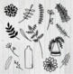 Leaves and Stems Clipart