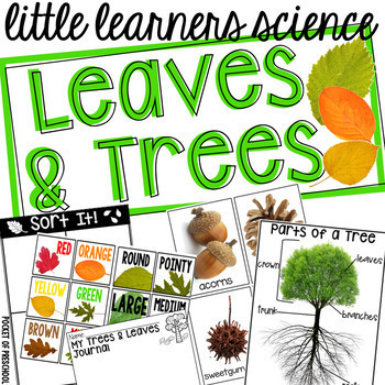 Leaves And Trees Science For Little Learners Preschool Pre K Kinder