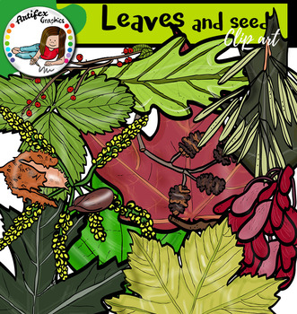Leaves and seeds clip art