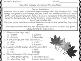 Leaves in Autumn - Reading Passage - Practice Worksheet