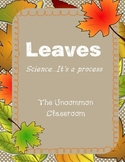 Leaves...Science, it's a process