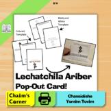 Lechatchila Ariber Pop-Out Card!