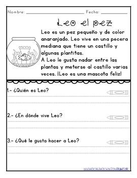 Lecturas de comprensión - Reading Comprehension in Spanish