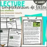 Lecture - Compréhension de textes #2