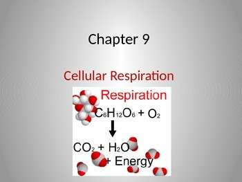 Lecture Notes on Cellular Respiration