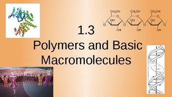 Lecture Slides Polymers and Basic Macromolecules