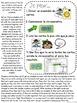 Lecture de vitesse - Été (FRENCH Summer Fluency Practice) - EDITABLE