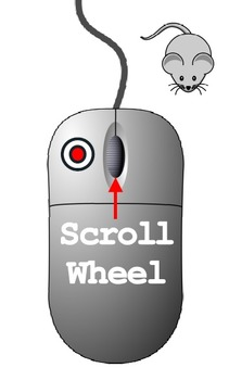 Left Click With A Mouse - Also Learn The Scroll Wheel  Learn the Computer Mouse!