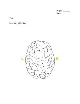 Left/Right Brain Interactive Notebook