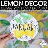 Lemon Dot Birthday Display
