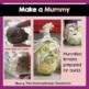 Lemon-Pharaoh Mummification and Lab Report