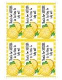 Lemon Squeeze Thank You / Teacher Appreciation Gift Tag