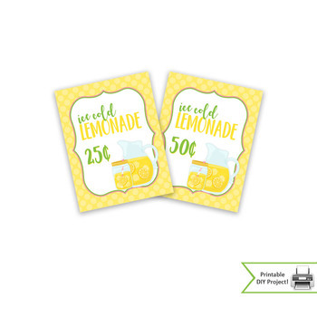 Lemonade Stand Kit for School Carnivals and Fundraiser Events