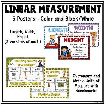Length, Width, Height: Posters, Organizer, and Word Search