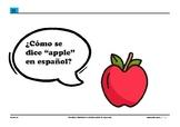 Lenguaje básico de la clase de español (Spanish basic clas