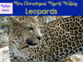 Leopards - Non Fiction Unit - Non- chronological Report Writing
