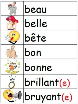 Les Adjectifs - French adjectives illustrated word wall