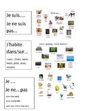 Les Animaux- Graphic Organizer