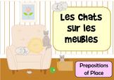 Les Chats Sur Les Meubles - French Preposition of Place Flashcards