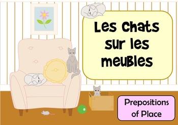 Les Chats Sur Les Meubles - French Preposition of Place Fl