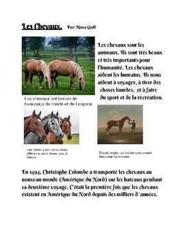 Les Chevaux- Horses