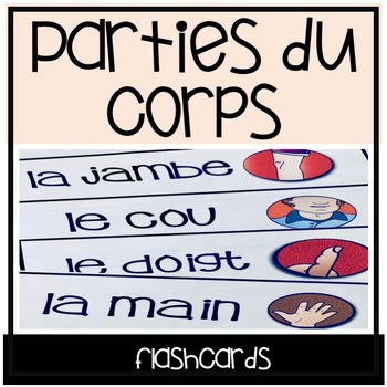Les Parties du Corps - Mur de mots - Flashcards