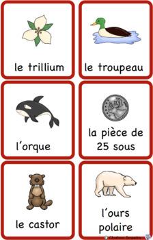 Les Symboles Canadiens Cartes de Vocabulaire