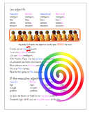Les adjectifs / Adjectives tutorial and practice (French)