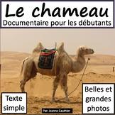 Les animaux: Le chameau