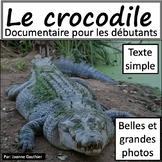 Les animaux: Le crocodile